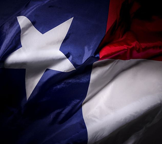 Texas state flag waving